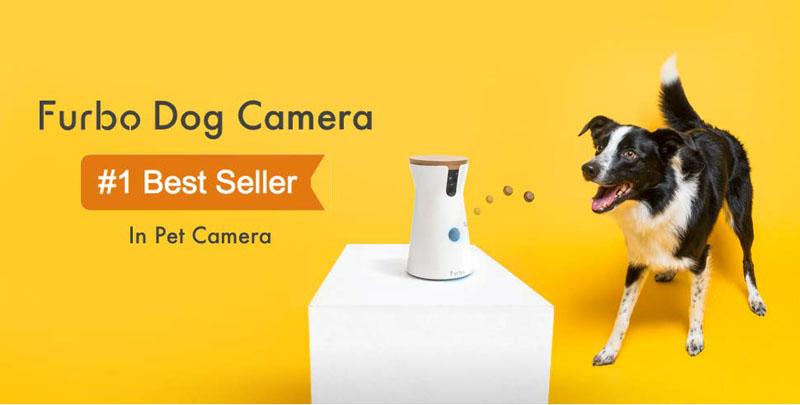 Best-pet-camera