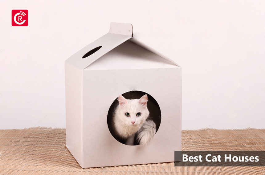 Best Cat Houses 2019