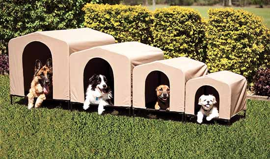 Best Dog House In 2019