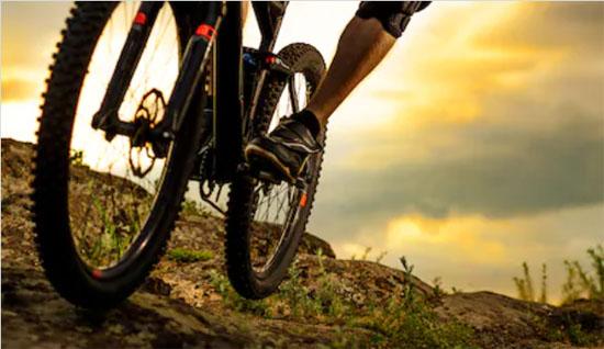 Top 5 Mountain Bike