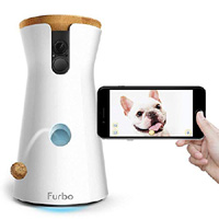 Best Pet Cameras<br />