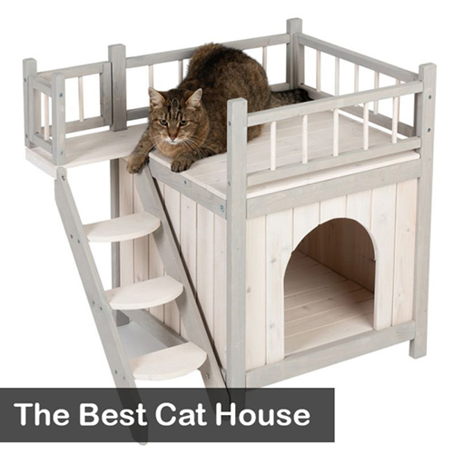 Best Cat House
