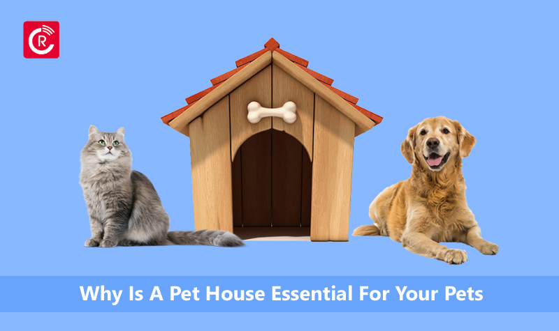 Why Is A Pet House Essential For Your Pets