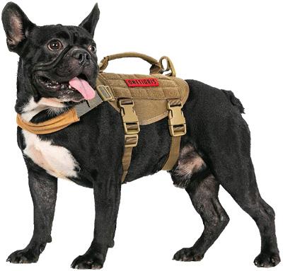Dog harness belt