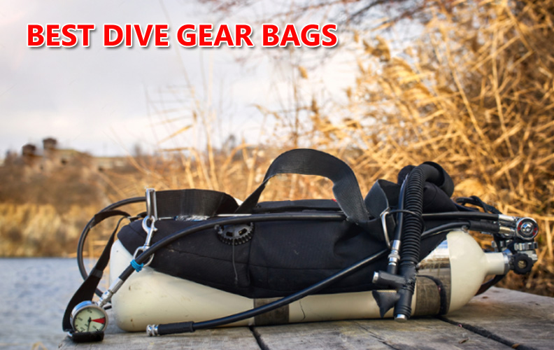 Best Dive Gear Bags