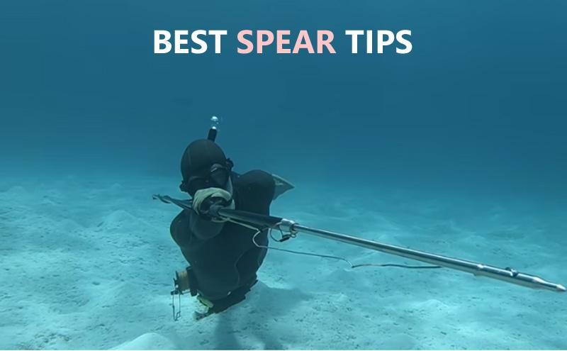 Best Spear Tips