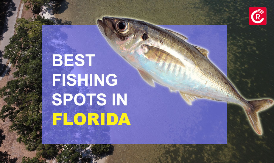 Best Fishing Spots In Florida