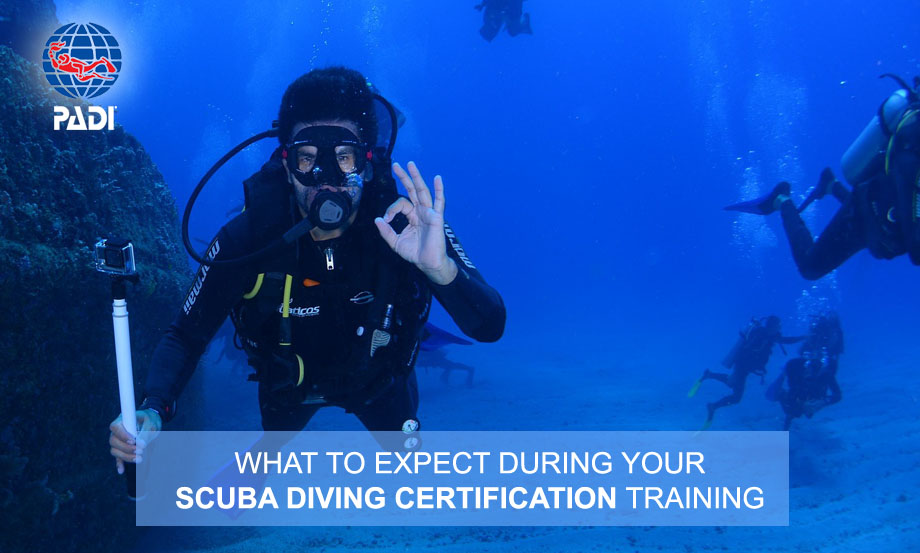 What to Expect During Your Scuba Diving Certification Training