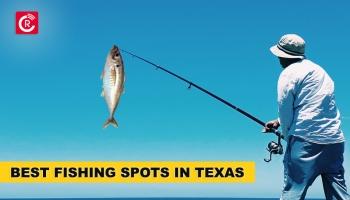 Best Fishing Spots In Texas
