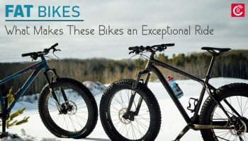 Fat Bikes: What Makes These Bikes an Exceptional Ride?