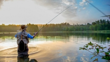 How to Master Fly Fishing?