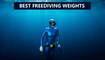 Best Freediving Weights For 2021