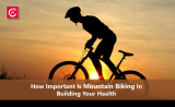 How Important Is Mountain Biking In Building Your Health?