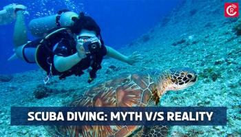 Scuba Diving: Myth VS Reality
