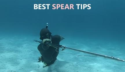 Best Spear Tips For 2021