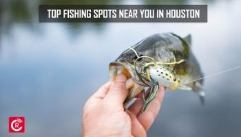Top Fishing Spots Near You in Houston