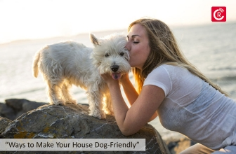 "Ways to Make Your House ""Dog-Friendly"""