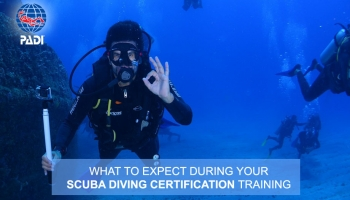 What to Expect During Your Scuba Diving Certification Training?